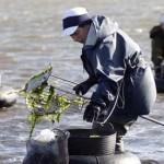 A nova lei de acuicultura condena á desaparición a milleiros de pescadores artesanais e mariscadoras