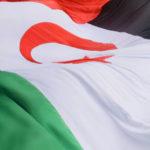 """Esquerda Unida tacha de """"cínica"""" a actitude da Comisión Europea sobre Marrocos e o seu empeño en saquear os recursos saharauís"""